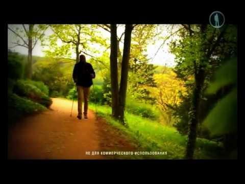 Германия: Курорт Баденвайлер и Фрайбург
