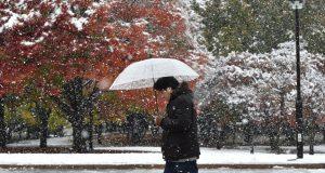 В японии снег выпал в ноябре впервые за 54 года
